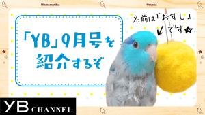 YB177_チャンネルサムネイル