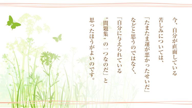 ●5月ザ伝_スペメ