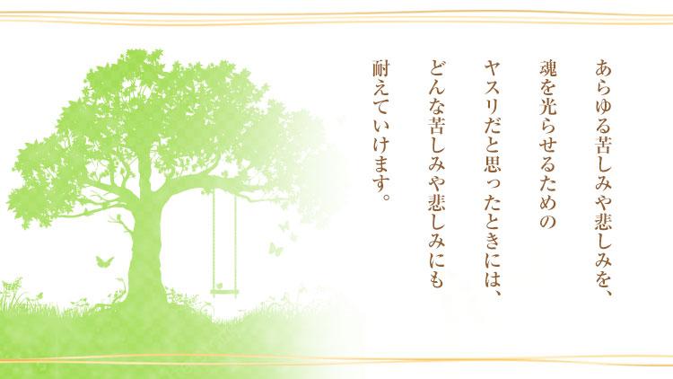 ★7月ザ伝_スペメ